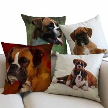 Pillows Boxer Dog