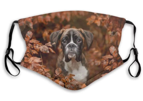 Replaceable Mask Boxer Dogs Cute