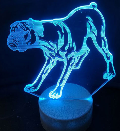 3D Boxer Dog Colorful Table Lamp
