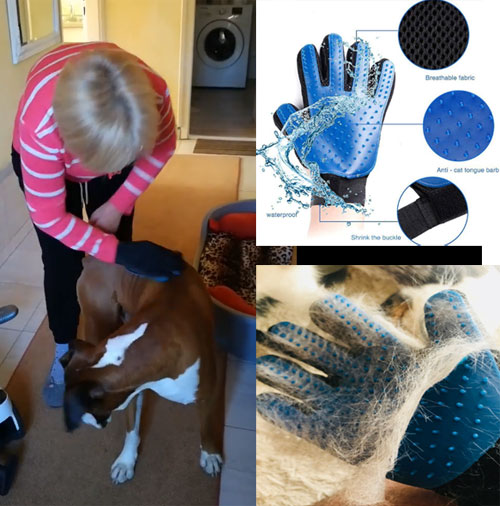 Glove for combing wool Boxer dogs